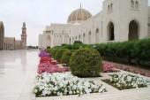 En Omán no se informó de ejecuciones en 2011, pero sigue existendo como castigo. #PenadeMuerte