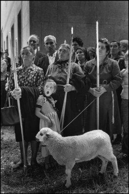 Cristina Garcia Rodero SPAIN. Galicia. The sacrifice. Pilgrimage of Nuestra Senora de los Milagros de Amil.