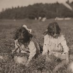 El campo y la granja de trabajo: Camille Carmo, de 7 años, y Justine, 9. La niña mayor recoge alrededor de 4 cubos al día. Rochester, Massachusetts.